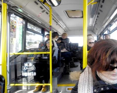 Estudi de viabilitat d'un sistema de Transport a la Demanda a l'Eliana